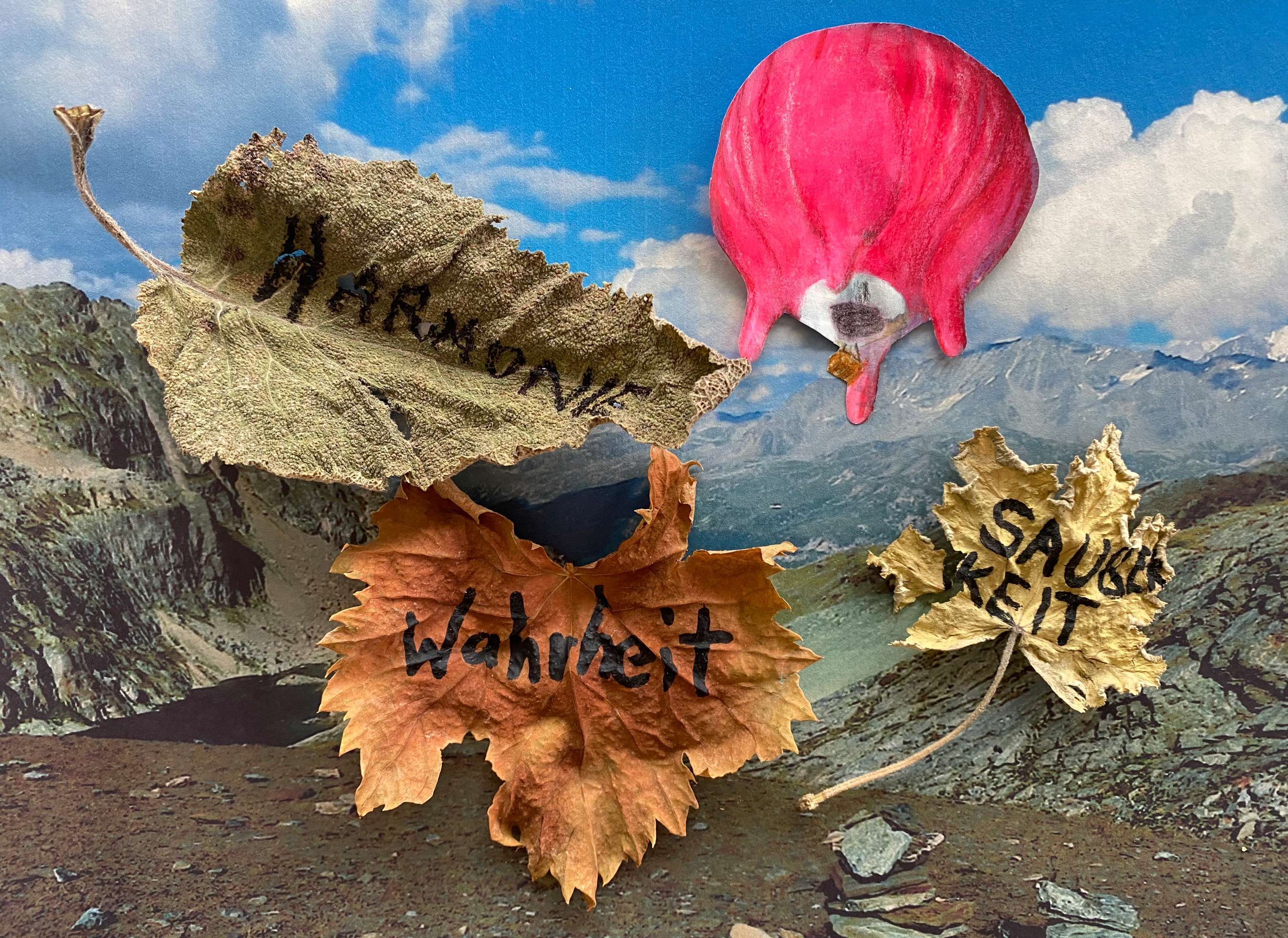 Collage of the Flying udder and leaves above Pass Lunghin, Switzerland.